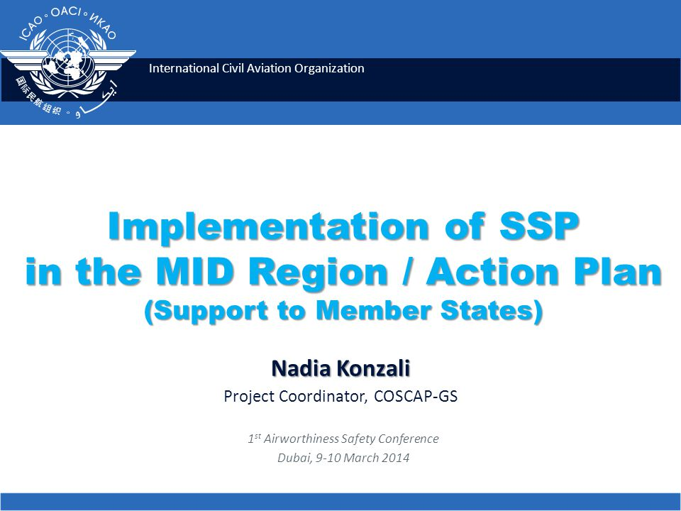 SSP Implementation Challenges  Security issues;  Lack of commitment of some Administrations;  Political tensions;  Shortage of qualified personnel;  Lack of financial resources.