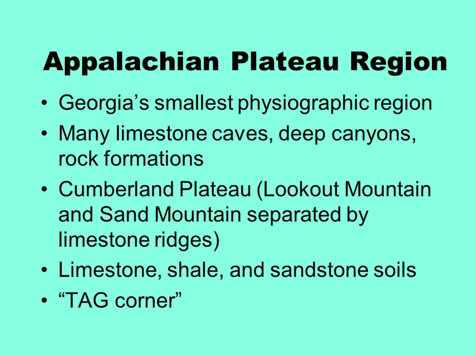 Appalachian Plateau Region Georgia's smallest physiographic region Many limestone caves, deep canyons, rock formations Cumberland Plateau (Lookout Mou