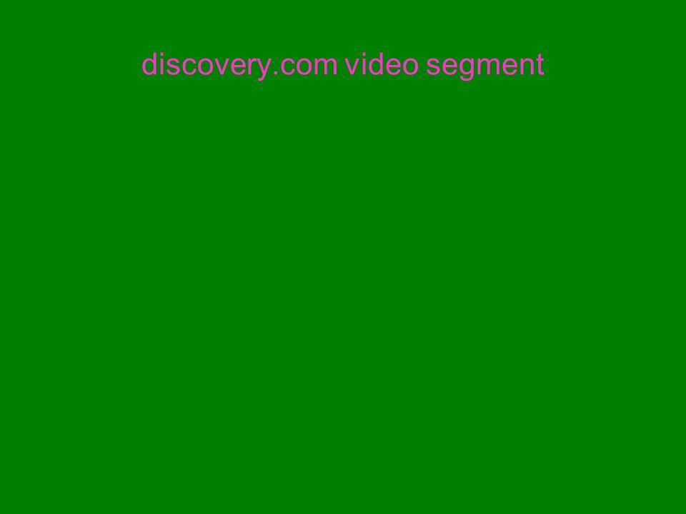 discovery.com video segment