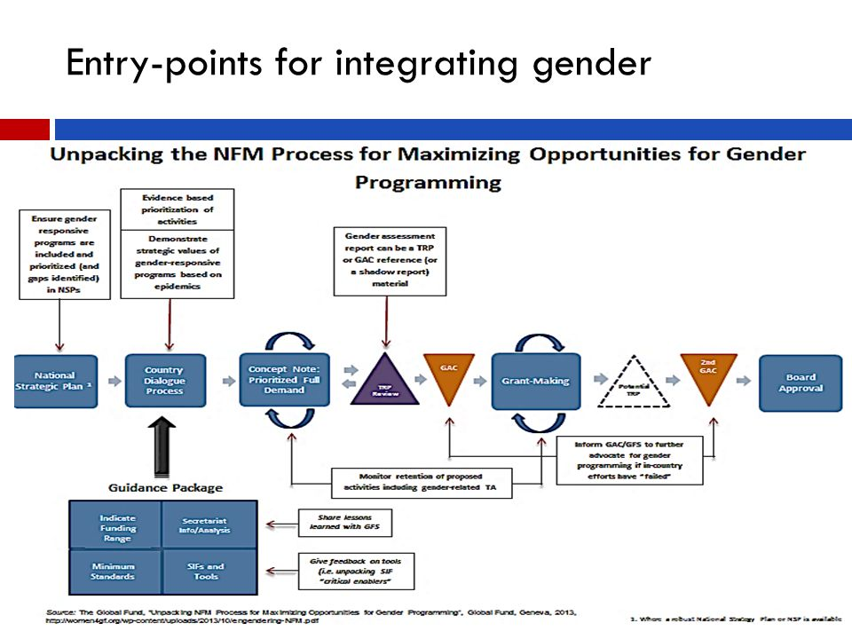 Entry-points for integrating gender