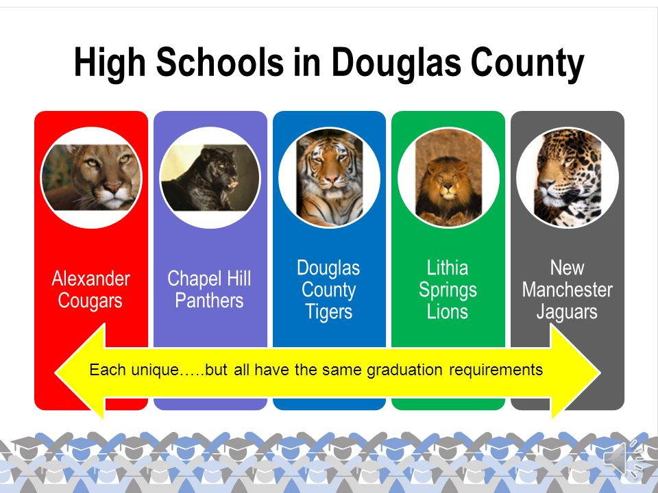 High Schools in Douglas County Alexander Cougars Chapel Hill Panthers Douglas County Tigers Lithia Springs Lions New Manchester Jaguars Each unique…..but all have the same graduation requirements