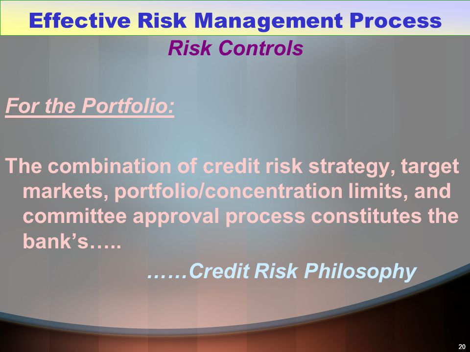 20 Risk Controls For the Portfolio: The combination of credit risk strategy, target markets, portfolio/concentration limits, and committee approval pr