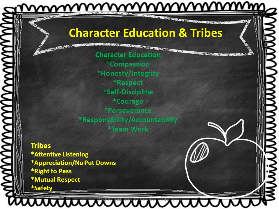 Character Education *Compassion *Honesty/Integrity *Respect *Self-Discipline *Courage *Perseverance *Responsibility/Accountability *Team Work Characte