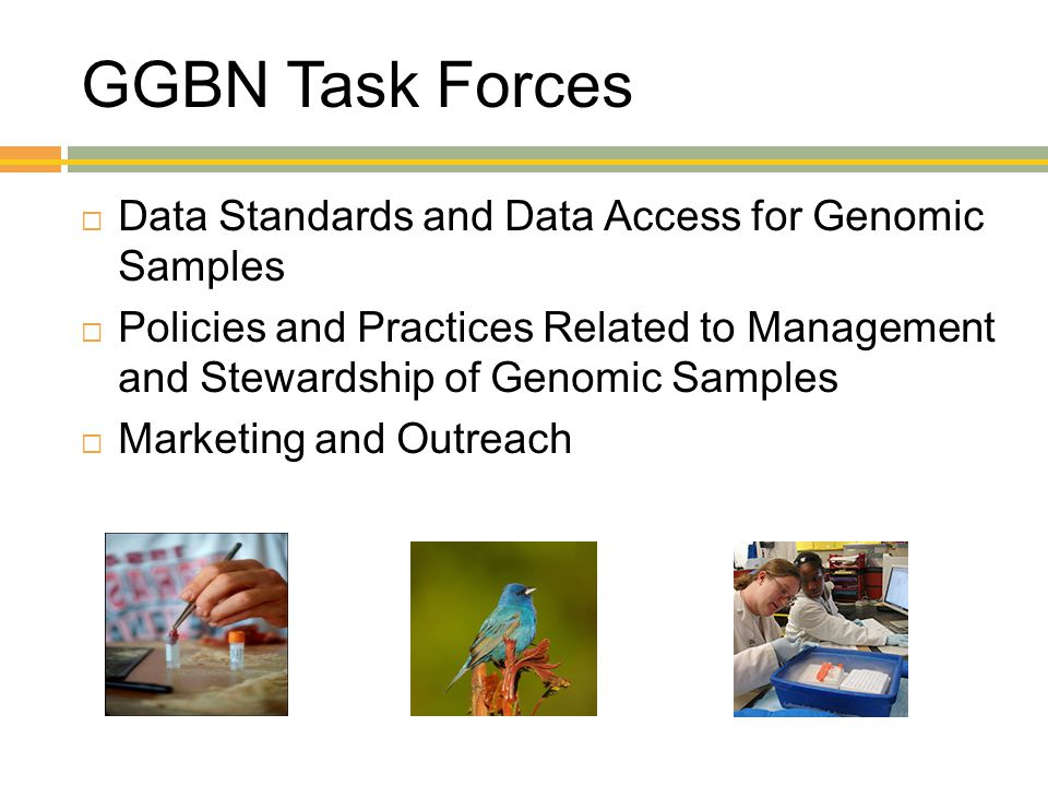 Data Standards and Data AccessTask Force Program of Work  Develop a standard for sharing DNA and tissue information  Develop a global platform for aggregating relevant data sources of genomic samples, vouchers, molecular analysis, publications, and images