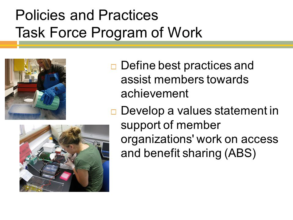 Policies and Practices Task Force Program of Work  Define best practices and assist members towards achievement  Develop a values statement in suppo