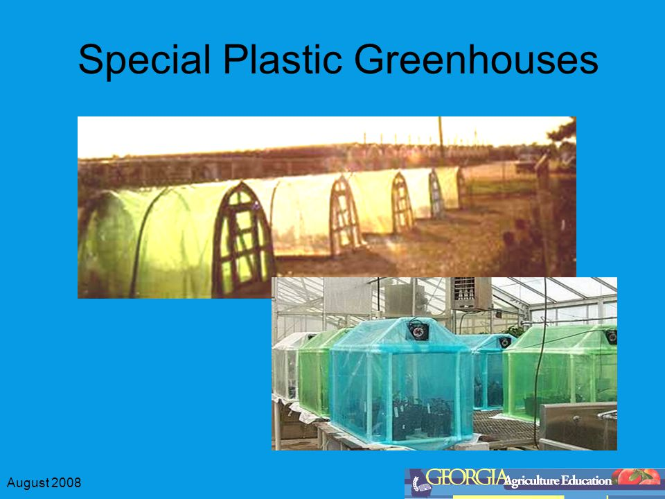 August 2008 Special Plastic Greenhouses