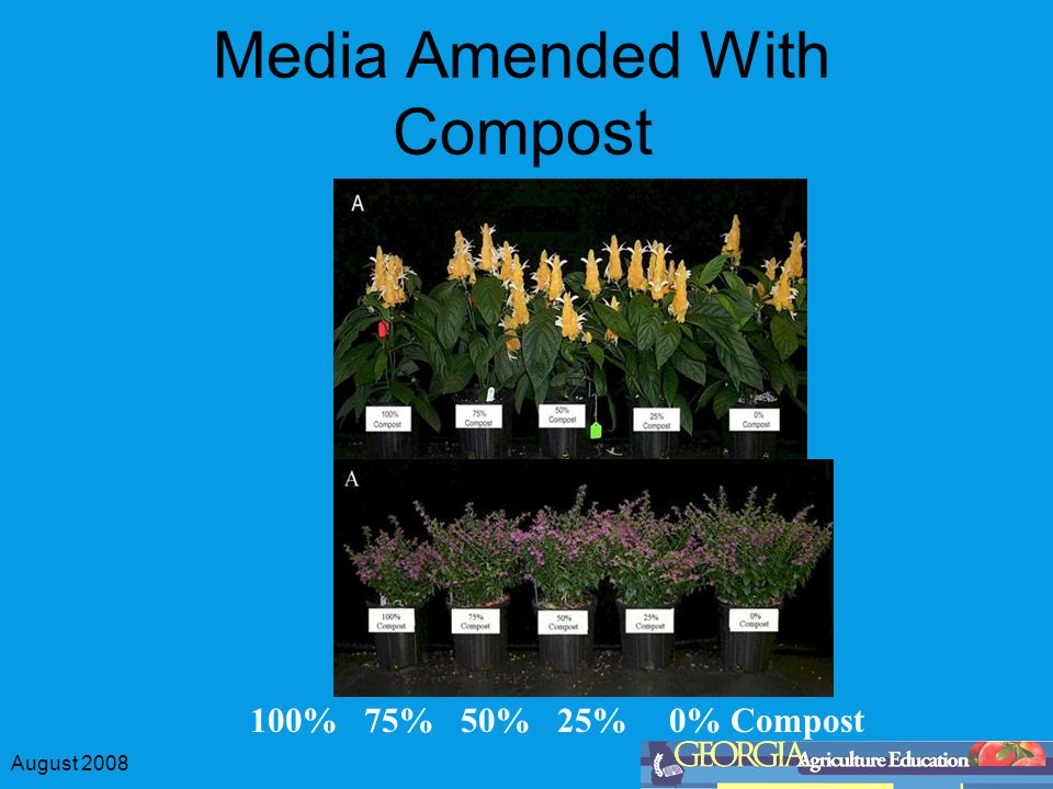 August 2008 Media Amended With Compost 100% 75% 50% 25% 0% Compost
