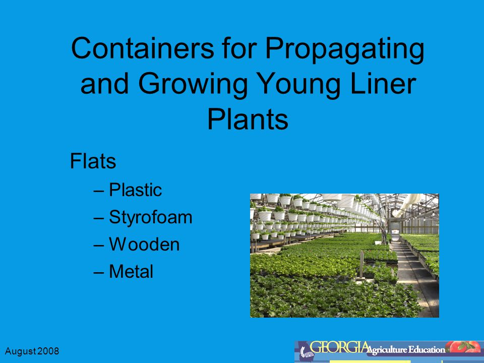August 2008 Containers for Propagating and Growing Young Liner Plants Flats –Plastic –Styrofoam –Wooden –Metal