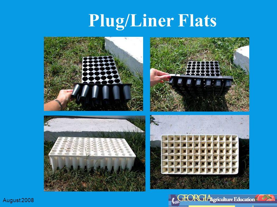 August 2008 Plug/Liner Flats