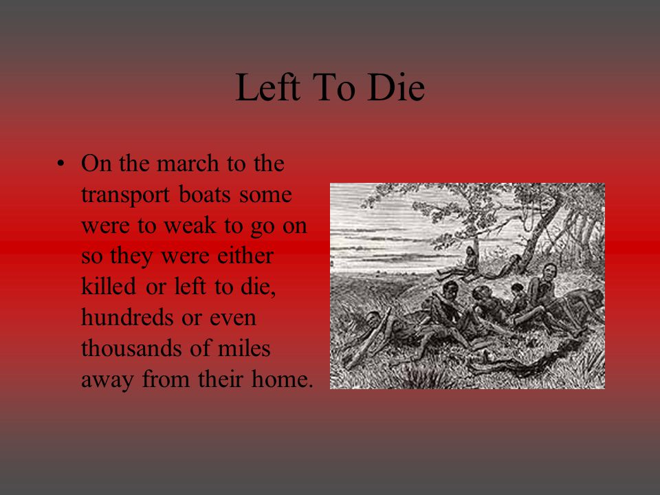 Left To Die On the march to the transport boats some were to weak to go on so they were either killed or left to die, hundreds or even thousands of miles away from their home.