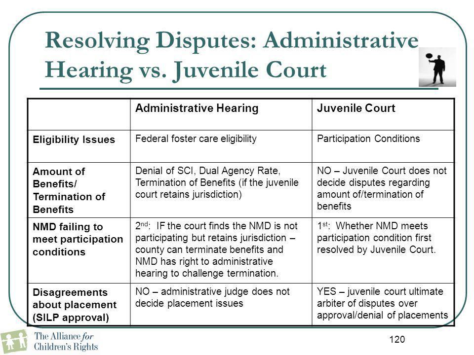 Resolving Disputes: Administrative Hearing vs. Juvenile Court Administrative HearingJuvenile Court Eligibility Issues Federal foster care eligibilityP