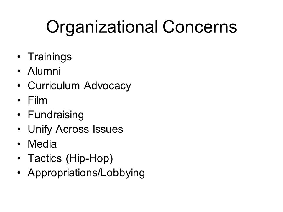 Organizational Concerns Trainings Alumni Curriculum Advocacy Film Fundraising Unify Across Issues Media Tactics (Hip-Hop) Appropriations/Lobbying