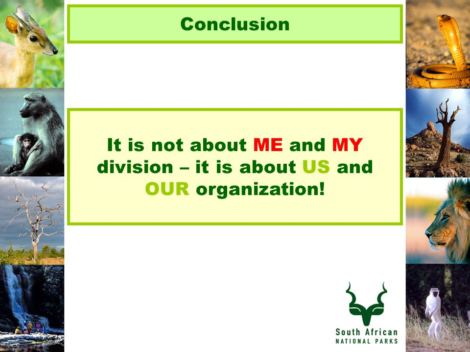 Conclusion It is not about ME and MY division – it is about US and OUR organization!