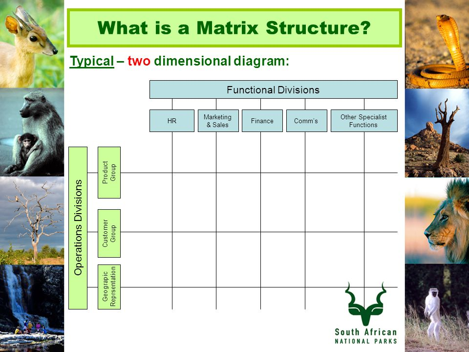 What is a Matrix Structure.