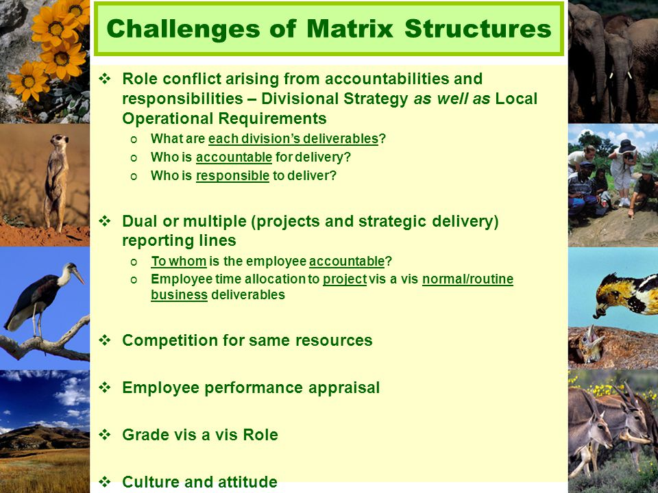 Challenges of Matrix Structures  Role conflict arising from accountabilities and responsibilities – Divisional Strategy as well as Local Operational Requirements oWhat are each division's deliverables.