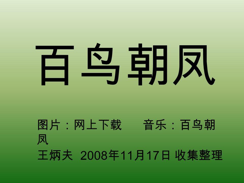 百鸟朝凤 图片:网上下载 音乐:百鸟朝 凤 王炳夫 2008 年 11 月 17 日 收集整理