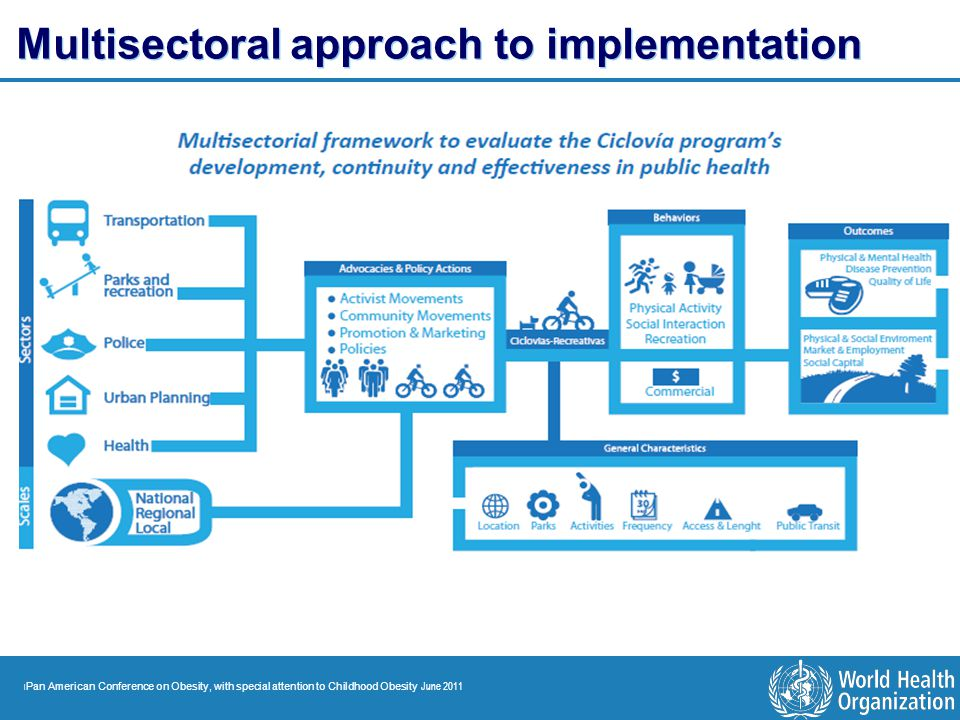 | Pan American Conference on Obesity, with special attention to Childhood Obesity June 2011 Multisectoral approach to implementation
