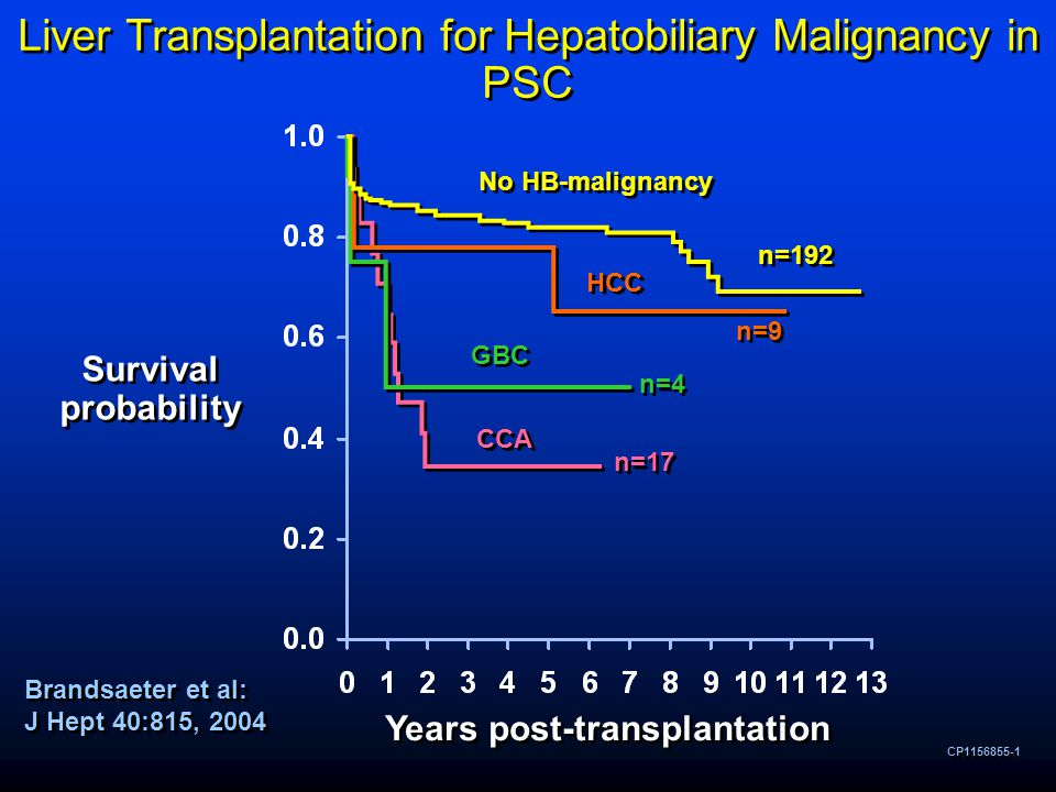 Liver Transplantation for Hepatobiliary Malignancy in PSC CP1156855-1 Survival probability Years post-transplantation No HB-malignancy HCC GBC CCA n=192 n=9 n=4 n=17 Brandsaeter et al: J Hept 40:815, 2004