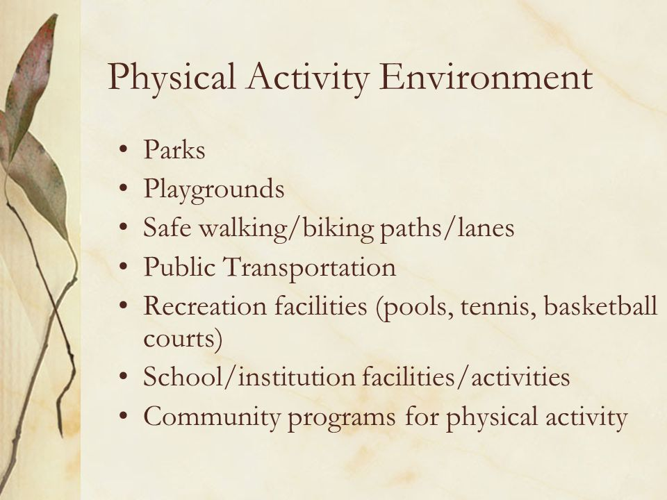 Physical Activity Environment Parks Playgrounds Safe walking/biking paths/lanes Public Transportation Recreation facilities (pools, tennis, basketball courts) School/institution facilities/activities Community programs for physical activity