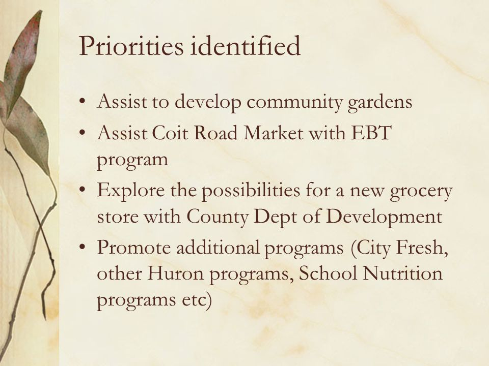 Priorities identified Assist to develop community gardens Assist Coit Road Market with EBT program Explore the possibilities for a new grocery store with County Dept of Development Promote additional programs (City Fresh, other Huron programs, School Nutrition programs etc)