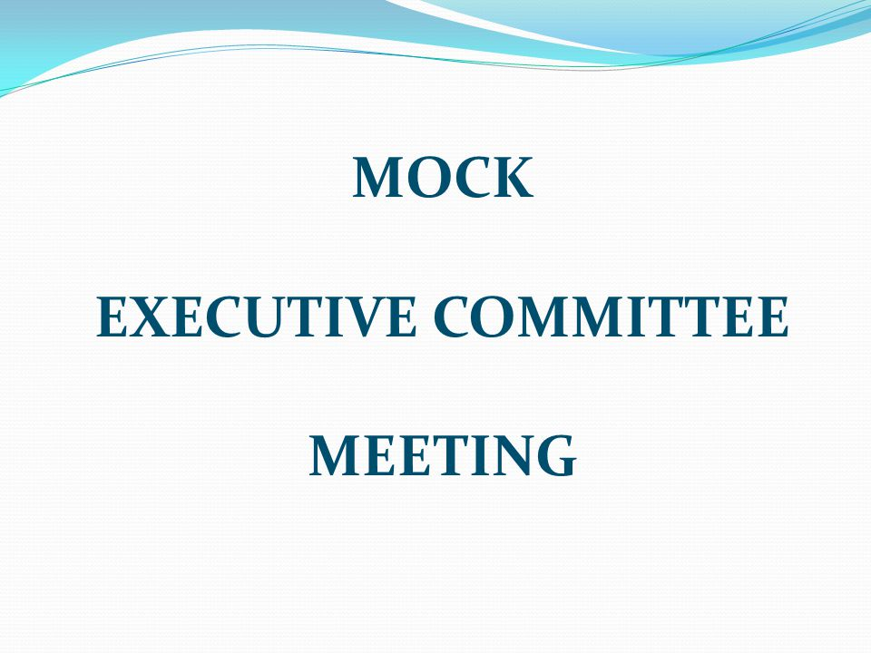 MOCK EXECUTIVE COMMITTEE MEETING