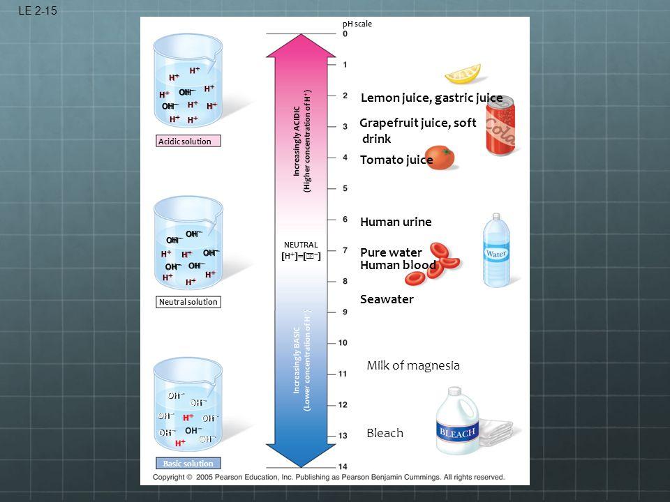 LE 2-15 Acidic solution OH  HH HH HH HH HH HH HH HH HH HH HH HH HH Increasingly ACIDIC (Higher concentration of H  ) Neutr