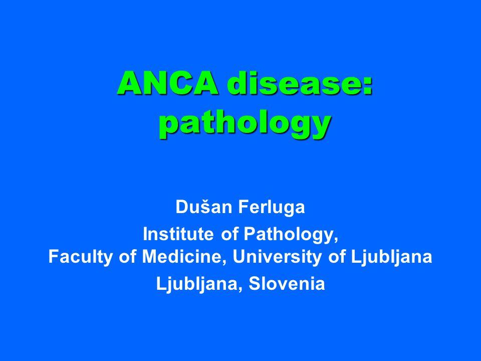 ANCA disease: pathology Dušan Ferluga Institute of Pathology, Faculty of Medicine, University of Ljubljana Ljubljana, Slovenia