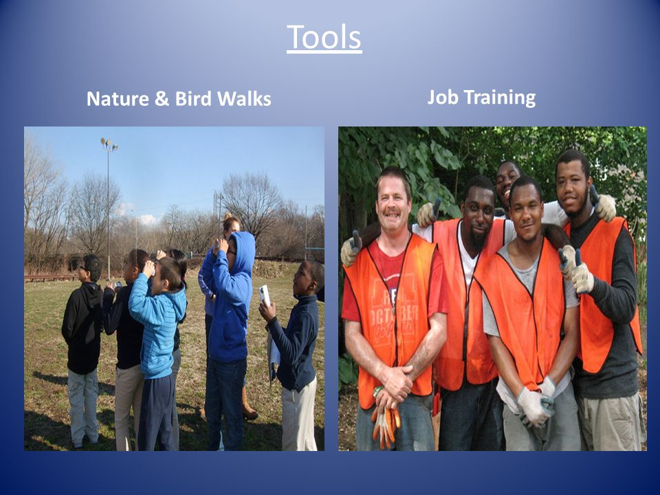 Tools Nature & Bird Walks Job Training