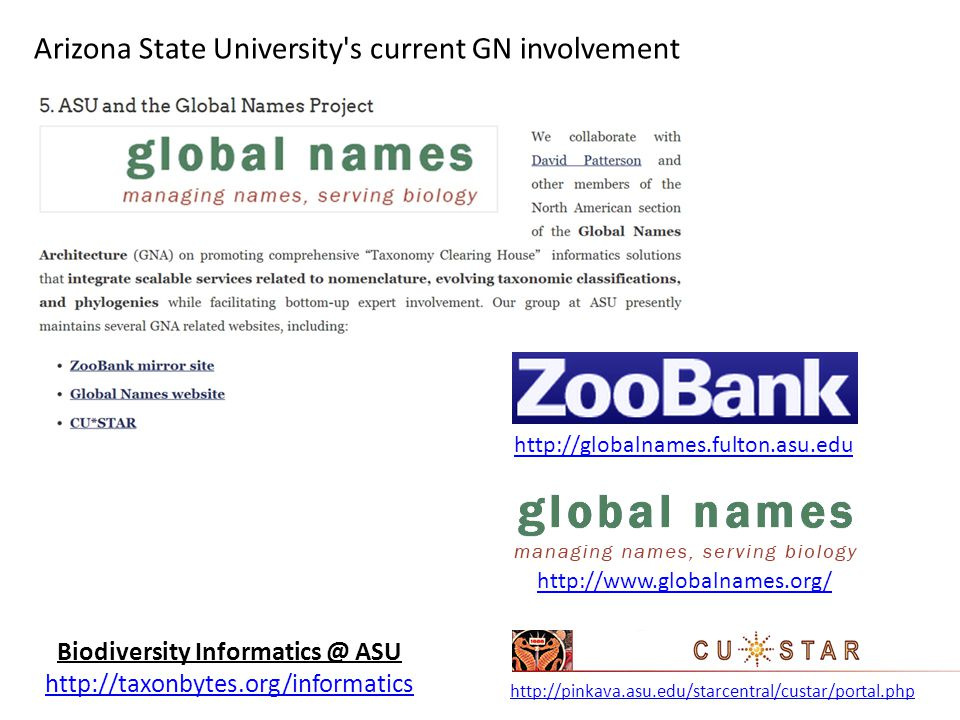 Biodiversity Informatics @ ASU http://taxonbytes.org/informatics http://globalnames.fulton.asu.edu http://www.globalnames.org/ http://pinkava.asu.edu/starcentral/custar/portal.php Arizona State University s current GN involvement Concept/proposal of a GN Taxonomic Clearing House (TCH)
