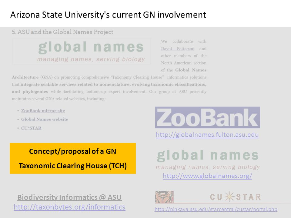 Biodiversity Informatics @ ASU http://taxonbytes.org/informatics http://globalnames.fulton.asu.edu http://www.globalnames.org/ http://pinkava.asu.edu/starcentral/custar/portal.php Arizona State University s current GN involvement Concept/proposal of a GN Taxonomic Clearing House (TCH)