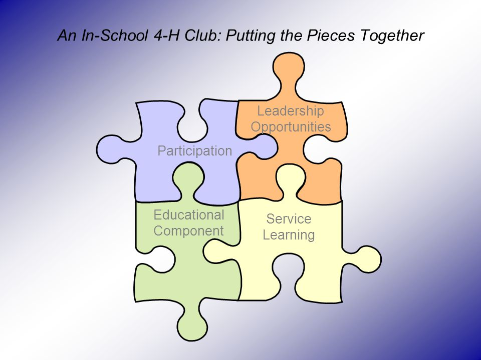 An In-School 4-H Club: Putting the Pieces Together Participation Leadership Opportunities Educational Component Service Learning