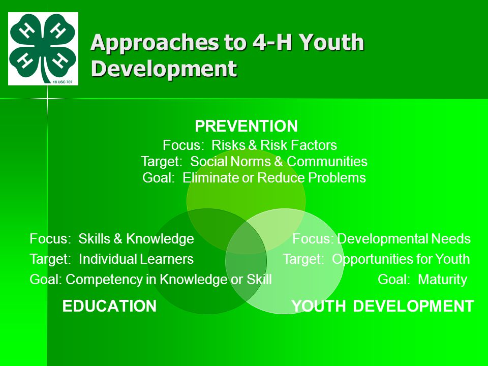 Essential Elements of a Youth Development Approach The Youth Development Approach considers the whole young person, not just a single characteristic or problem.