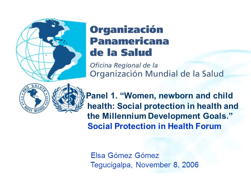 """Panel 1. """"Women, newborn and child health: Social protection in health and the Millennium Development Goals."""" Social Protection in Health Forum Elsa G"""
