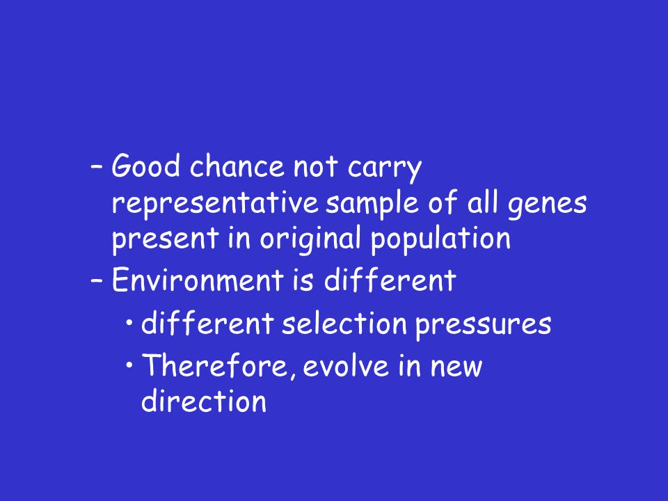–Good chance not carry representative sample of all genes present in original population –Environment is different different selection pressures Therefore, evolve in new direction