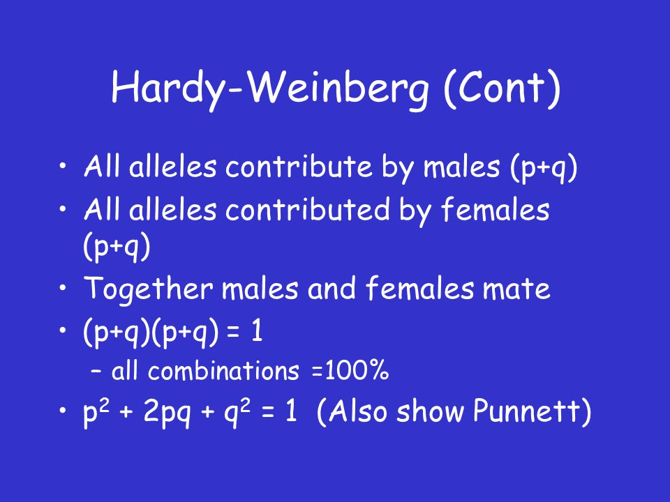 Hardy-Weinberg (Cont) All alleles contribute by males (p+q) All alleles contributed by females (p+q) Together males and females mate (p+q)(p+q) = 1 –all combinations =100% p 2 + 2pq + q 2 = 1 (Also show Punnett)