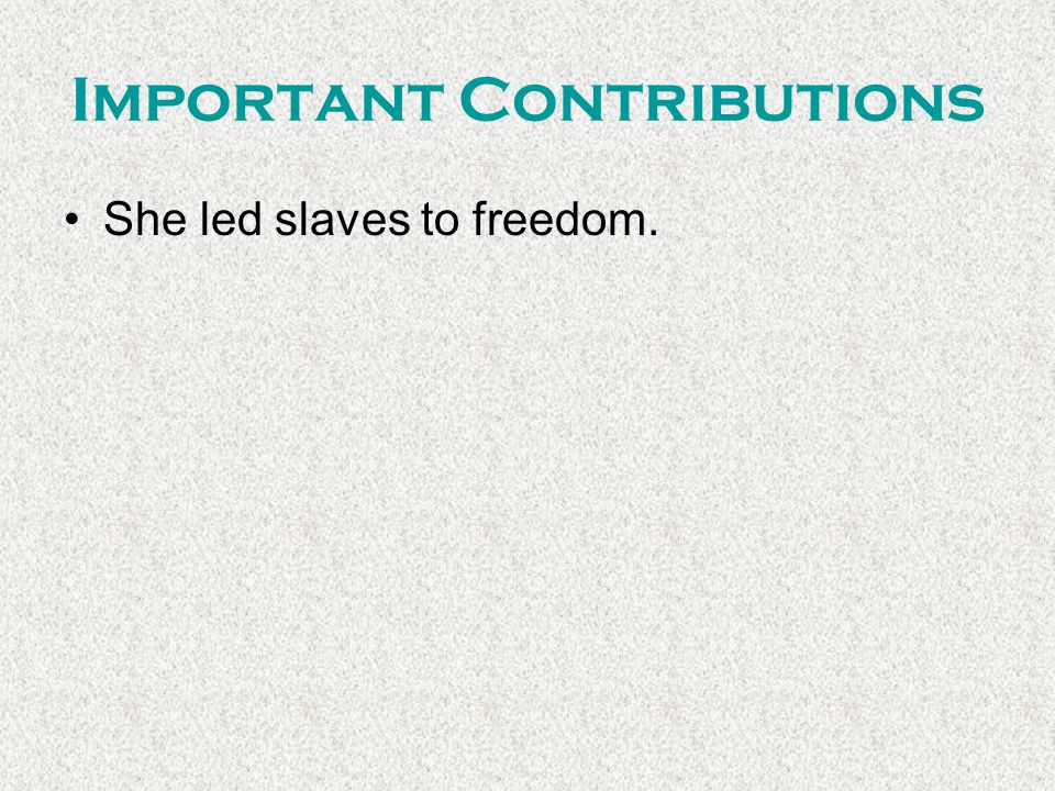 Important Contributions She led slaves to freedom.