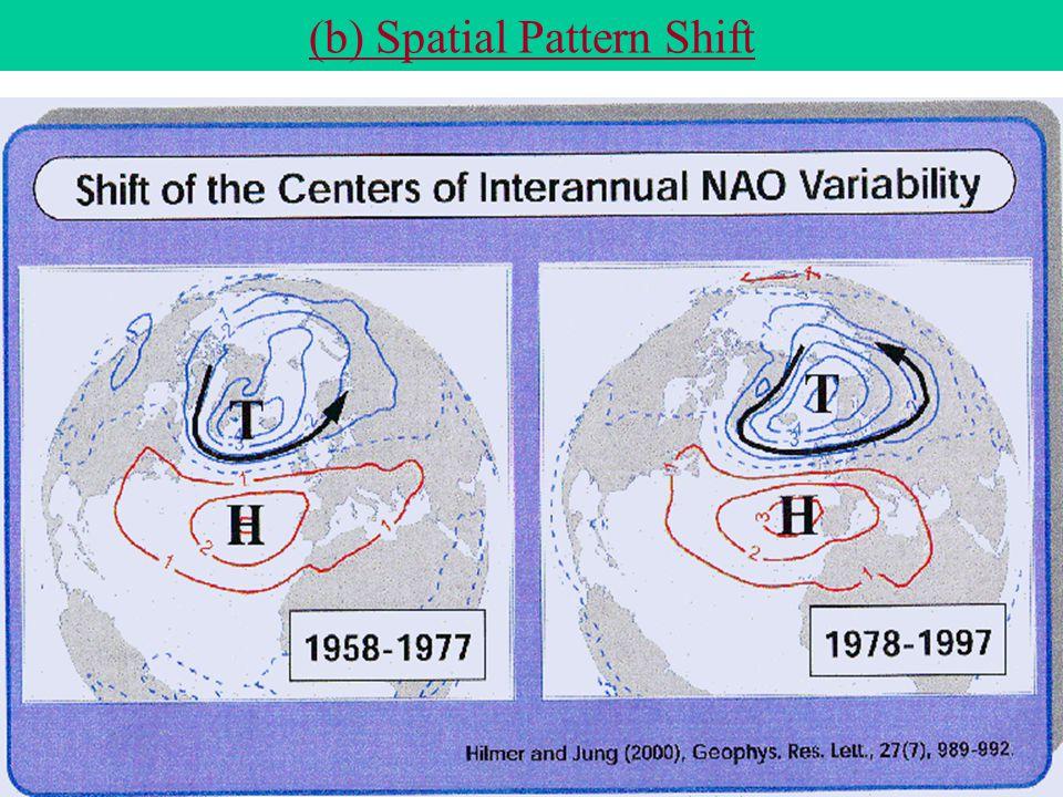(b) Spatial Pattern Shift