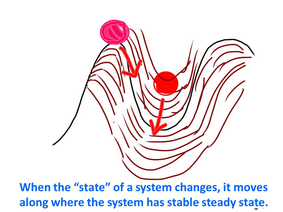 When the state of a system changes, it moves along where the system has stable steady state.