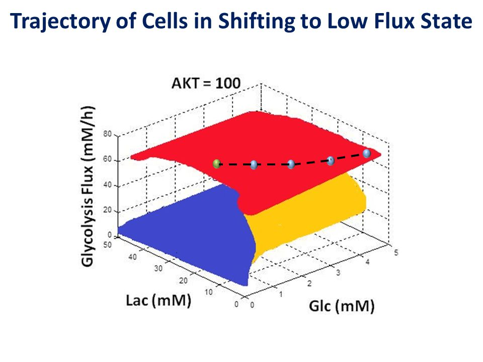 Trajectory of Cells in Shifting to Low Flux State