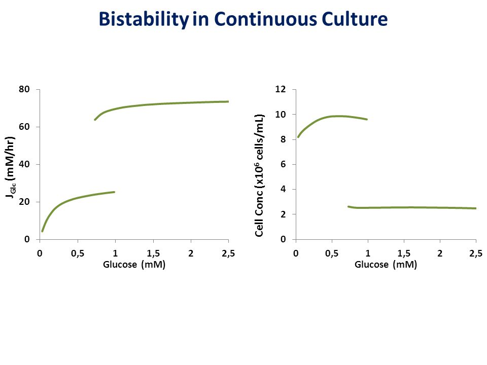 Bistability in Continuous Culture