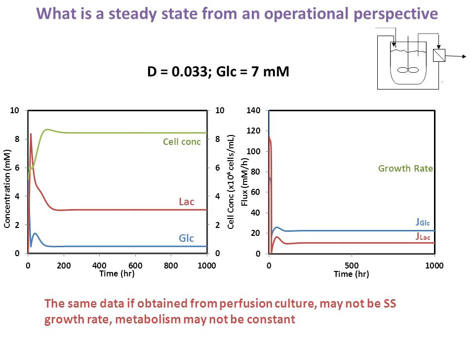 Lac Glc Cell conc J Lac Growth Rate J Glc What is a steady state from an operational perspective D = 0.033; Glc = 7 mM The same data if obtained from perfusion culture, may not be SS growth rate, metabolism may not be constant