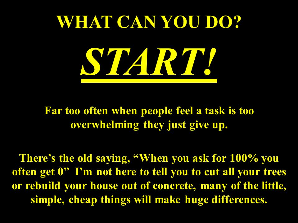 WHAT CAN YOU DO. START.