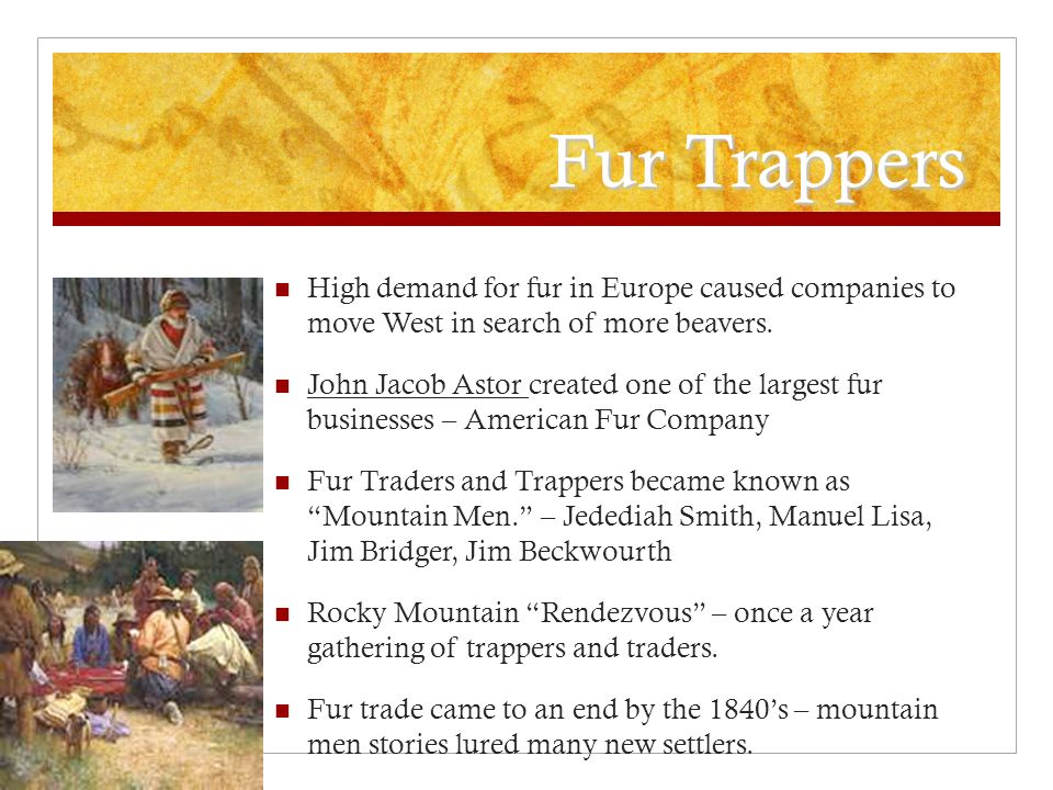 Fur Trappers High demand for fur in Europe caused companies to move West in search of more beavers. John Jacob Astor created one of the largest fur bu