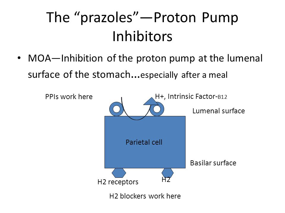 """The """"prazoles""""—Proton Pump Inhibitors MOA—Inhibition of the proton pump at the lumenal surface of the stomach … especially after a meal Parietal cell"""