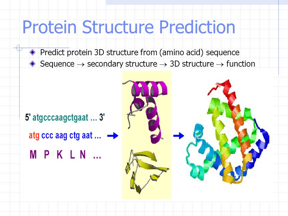 Protein Structure Prediction Predict protein 3D structure from (amino acid) sequence Sequence  secondary structure  3D structure  function
