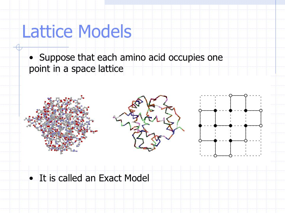 Suppose that each amino acid occupies one point in a space lattice It is called an Exact Model Lattice Models