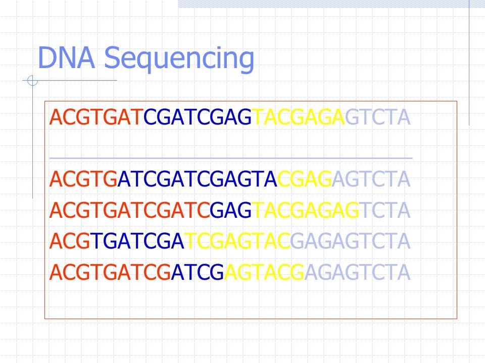 DNA Sequencing ACGTGATCGATCGAGTACGAGAGTCTA _______________________________ ACGTGATCGATCGAGTACGAGAGTCTA