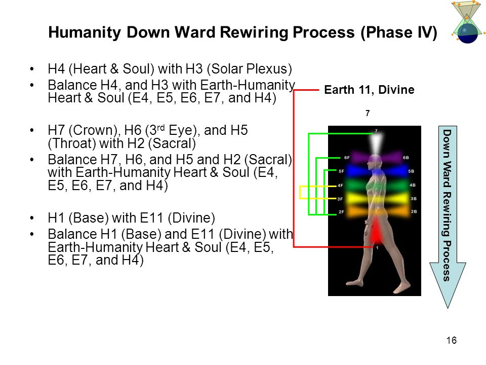 16 Humanity Down Ward Rewiring Process (Phase IV) H4 (Heart & Soul) with H3 (Solar Plexus) Balance H4, and H3 with Earth-Humanity Heart & Soul (E4, E5, E6, E7, and H4) H7 (Crown), H6 (3 rd Eye), and H5 (Throat) with H2 (Sacral) Balance H7, H6, and H5 and H2 (Sacral) with Earth-Humanity Heart & Soul (E4, E5, E6, E7, and H4) H1 (Base) with E11 (Divine) Balance H1 (Base) and E11 (Divine) with Earth-Humanity Heart & Soul (E4, E5, E6, E7, and H4) Earth 11, Divine 7 Down Ward Rewiring Process