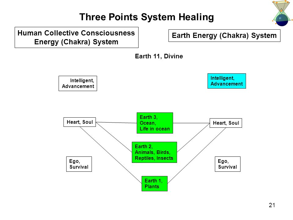 21 Three Points System Healing Intelligent, Advancement Heart, Soul Human Collective Consciousness Energy (Chakra) System Intelligent, Advancement Heart, Soul Earth 1, Plants Earth 11, Divine Earth Energy (Chakra) System Ego, Survival Earth 3, Ocean, Life in ocean Earth 2, Animals, Birds, Reptiles, Insects Ego, Survival