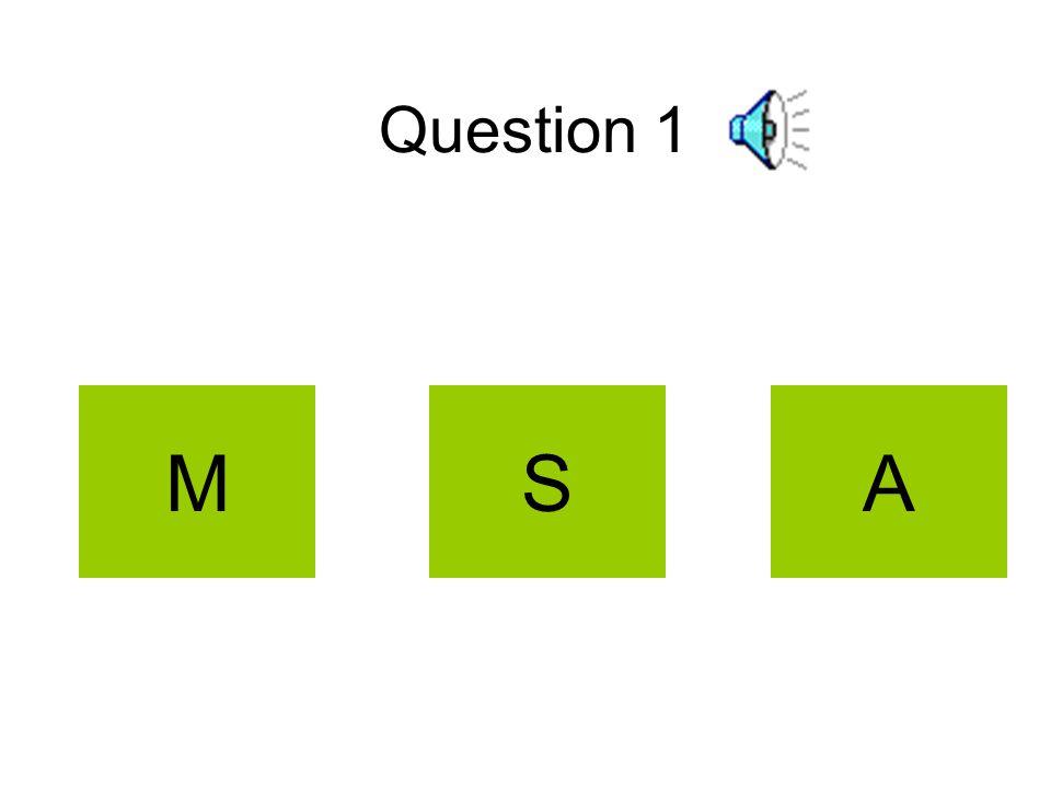 Question 1 MSA